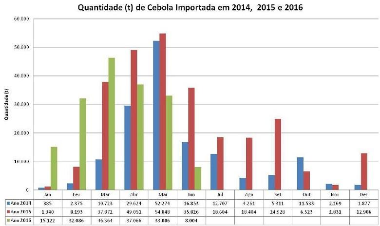 agricultura-importacao-cebola-junho (Foto: Agrostat)