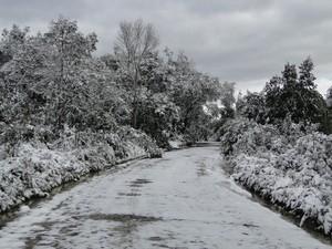 Neve pode cair novamente em Santa Catarina (Foto: Elcio Glovacki/Arquivo Pessoal)