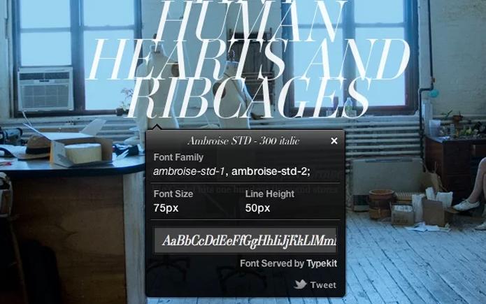 What Font, oferece extensão e bookmarklet para todos os navegadores (Foto: Reprodução/André Sugai)