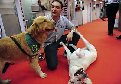 George ao lado das cães-guia Pucca e Zuca (Foto: Arquivo Pessoal)