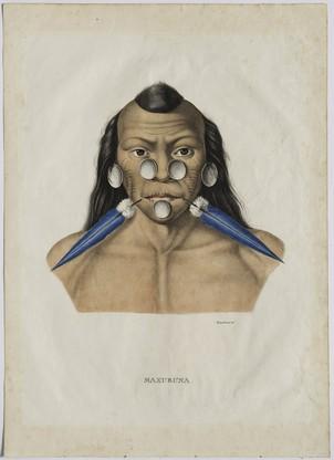 Retrato do índio Muxuruna. Considerado uma das mais belas gravuras de índios do século XIX, litografias coloridas e mão do álbum Viagem ao Brasil de de Spix e Martius, publicado em Munique em 1823 (Foto: Foto/ Edouard Fraipont)