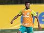 Enfim, torcedores têm chance de escalar Palmeiras titular no Cartola