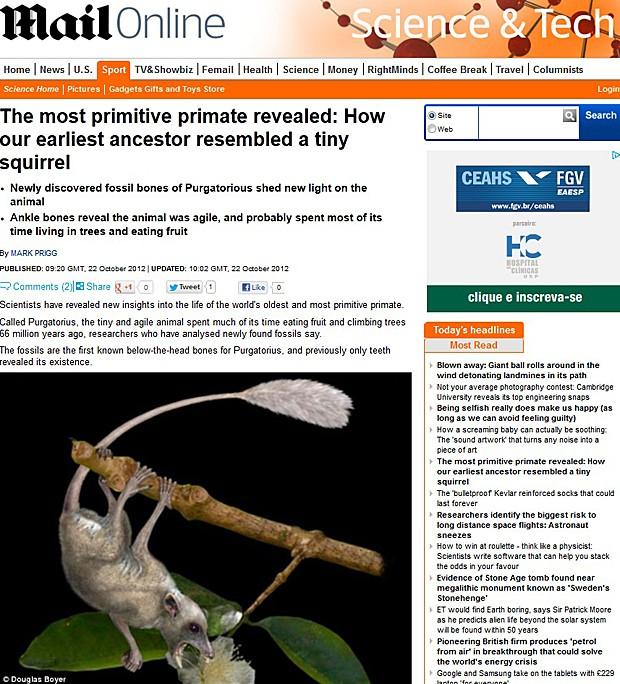Purgatorius ancestral do homem (Foto: Daily Mail/Reprodução)