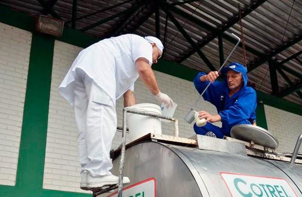 Técnicos do Mapa recolhem amostras de leite em caminhão durante a sétima etapa da Operação Leite Compensado no Norte do RS (Foto: Divulgação/MP)