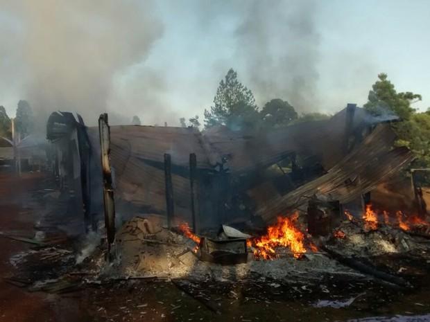 Além de destuir as mudas, grupo de mulheres colocou fogo nos viveiros da fazenda da Araupel em Quedas do Iguaçu (Foto: Araupel / Divulgação)