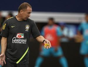 mano menezes seleção brasileira   (Foto: Mowa Press)