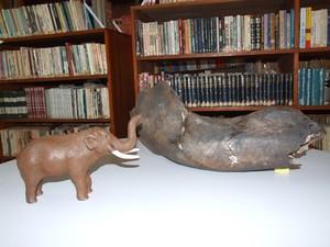 Parte da mandíbula de um mastodonte também já foi encontrada em Santa Vitória do Palmar (Foto: Guacira dos Santos)