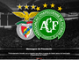 "Benfica se disponibiliza para ajudar Chape a ""superar perda desportiva"""