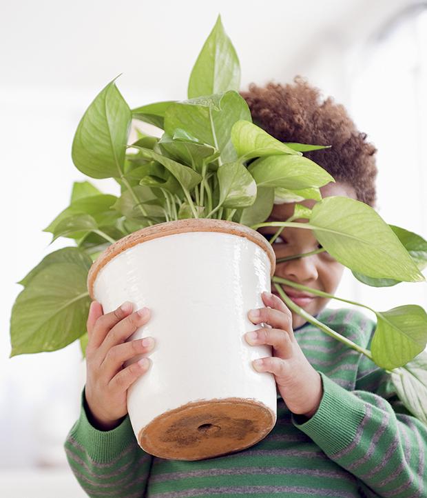 Menino com planta (Foto: JGI/Jamie Grill/getty images)