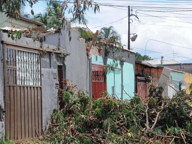 Área em Sobradinho, no Distrito Federal, afetada por chuva neste sábado (28) (Foto: Toninho Tavares/Agência Brasília)