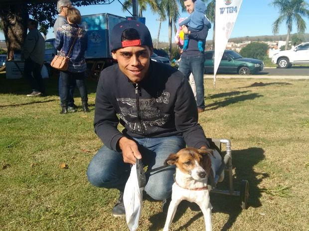 Dois anos depois do acidente, a cadelinha está totalmente recuperada (Foto: Mariana Bonora/G1)