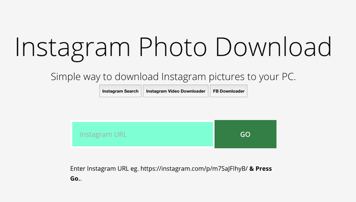 Faça download de fotos do Instagram com Dinsta (Foto: Reprodução/Dinsta)