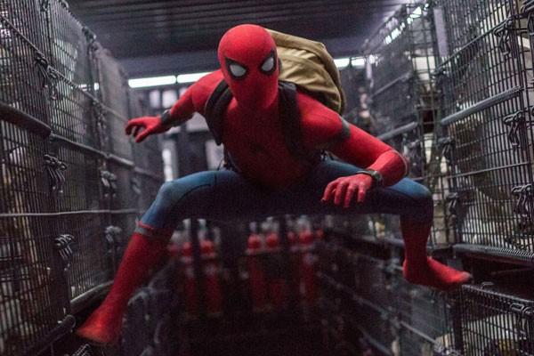 Mostramos a ordem certa para assistir aos filmes da Marvel (Foto: Reprodução/Divulgação)
