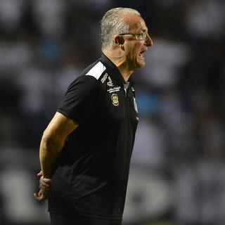 Dorival Júnior Santos (Foto: Mauro Horita / Divulgação Santos FC)