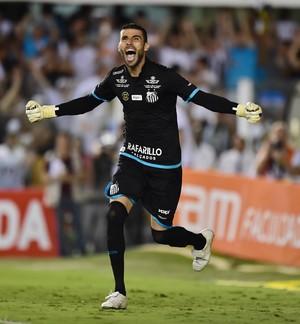 Vanderlei - Santos x Palmeiras (Foto: Marcos Ribolli)