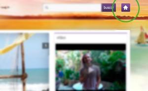 Internet Explorer (Foto: Flor do Caribe / TV Globo)