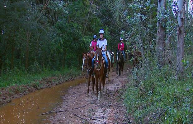 Turismo rural no interior de São Paulo (Foto: Reprodução EPTV/Caminhos da Roça)