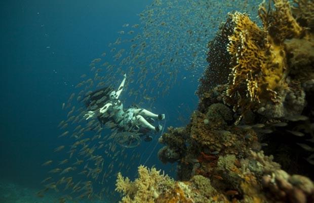 Vídeos com os mergulhos serão exibidos durante as Paralimpíadas (Foto: wearefreewheeling.org.uk)