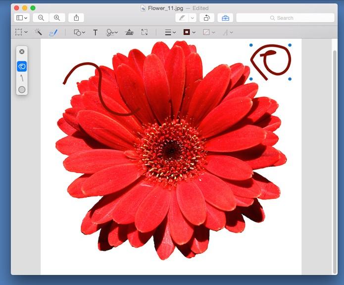Desenhe sobre a imagem  (Foto: Reprodução/André Sugai)