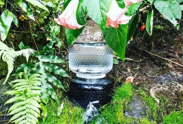 """Água """"crua"""" vendida pela Live Water - galão de 10 litros custa  (Foto: Divulgação Live Water)"""