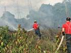 Incêndio atinge área de vegetação em conjunto residencial em Manaus