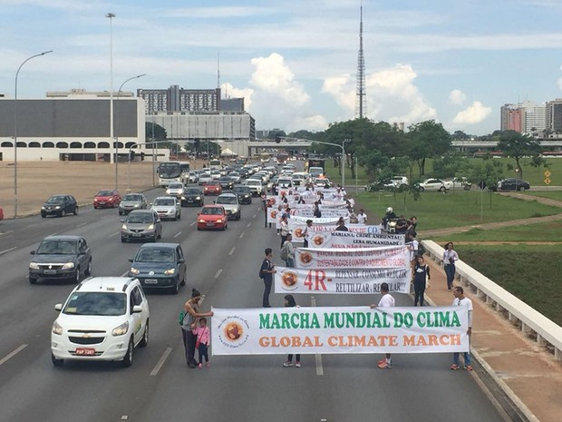 Manifestantes exibem faixas pelo meio ambiente em marcha na Esplanada dos Ministérios, na área central de Brasília, nesta quarta-feira (9) (Foto: Alexandre Bastos/G1)