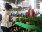 Feira em frente à TV Gazeta vende produtos agroecológicos
