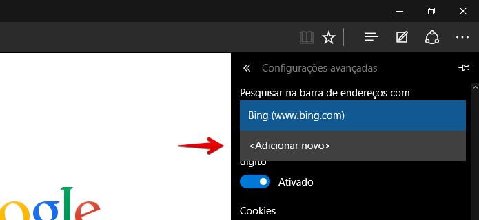 Adicionando novo provedor de busca (Foto: Reprodução/Helito Bijora)