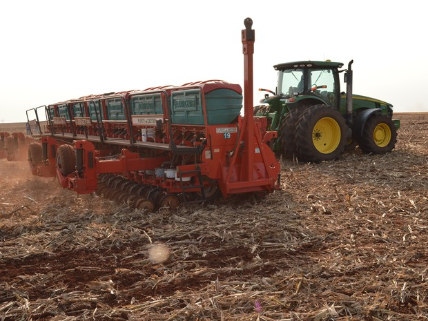 MS deve ampliar em 2,44% a área cultivada com soja na temporada 2016/2017 frente a anterior (Foto: Anderson Viegas/G1 MS)