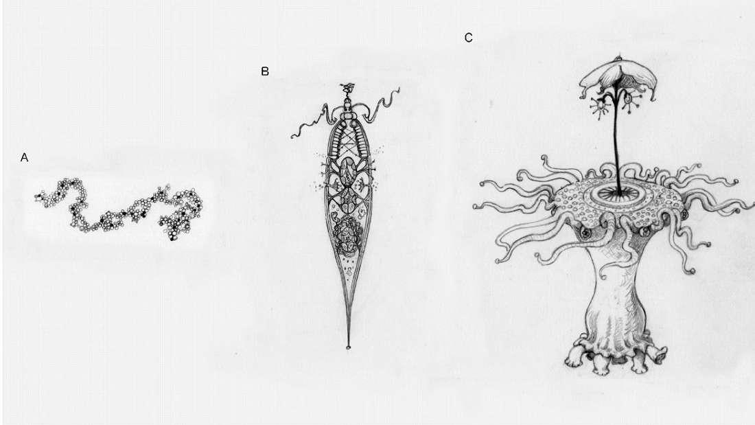 Da esquerda para a direita: uma simples molécula alienígena, uma célula alienígena e um pequeno alienígena com partes intrincadas (Foto: Universidade de Oxford)