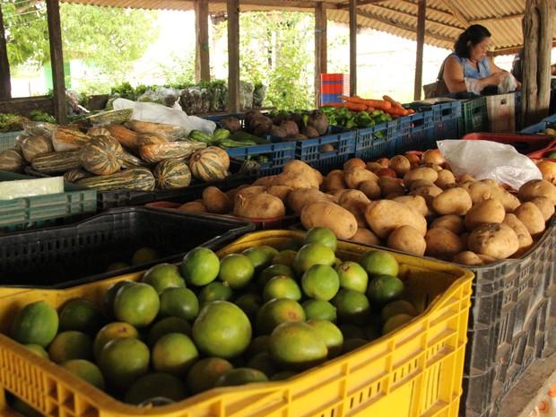 Produtores apontam aumento da procura por alimentos cultivados sem agrotóxicos (Foto: Ive Rylo/G1 AM)