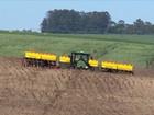 Plantio da soja entra na fase final no Rio Grande do Sul