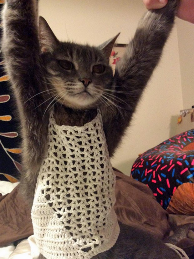 Mãe fotografa gata usando peça de crochê encomendada para ser usada pela filha de 16 anos, na Amazon (Foto: Reprodução/Amazon)