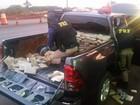 Uruguaio é preso transportando mais de 200 kg de maconha em Lindoeste