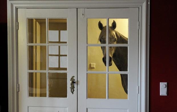 Desde o furacão, cavalo árabe passou a preferir ficar dentro da casa de sua dona (Foto: Carsten Rehder, DPA/AFP)