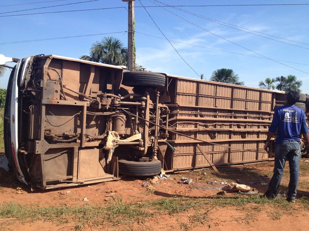 Acidente ônibus (Foto: Rayssa Natani/G1)