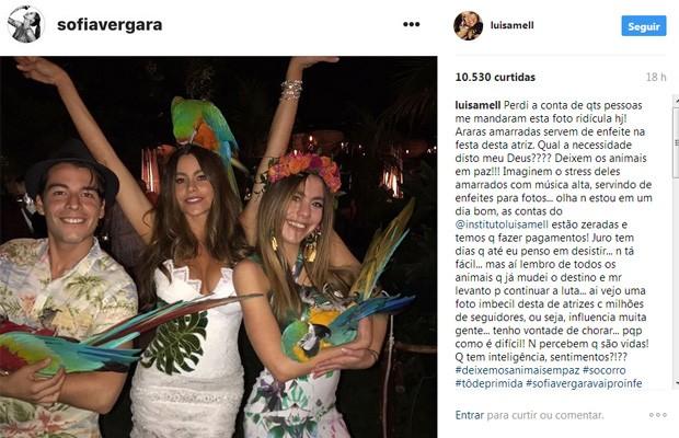 Post de Luisa Mell (Foto: Reprodução / Instagram)