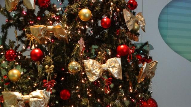 Árvore de Natal armada na recepção da emissora (Foto: André Hilton / TV Asa Branca)