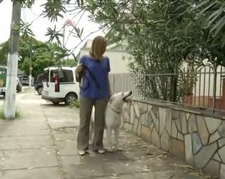 Teresa Freitas ficou um pouco nervosa na hora do passeio, mas no final, deu tudo certo (Foto: Reprodução Rio Sul Revista)