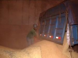 Descarregamento de soja produzida em MS em silo (Foto: Reprodução/TV Morena)