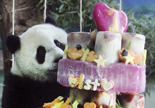 taiwan-panda-birthday_fran.jpg