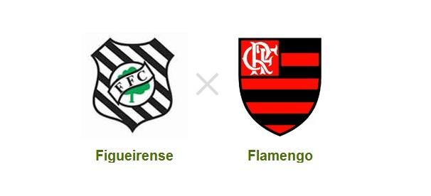 Figueirense e Flamengo se enfrentam nessa quarta-feira  (Foto: Reprodução)