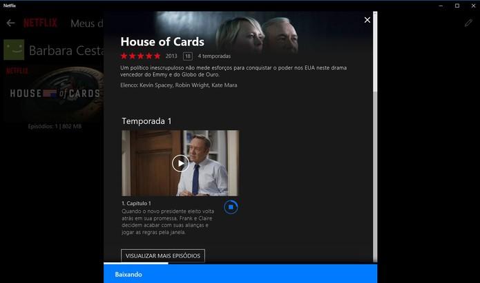 Download são organizados no aplicativo do Netflix para Windows 10 (Foto: Reprodução/Barbara Mannara)