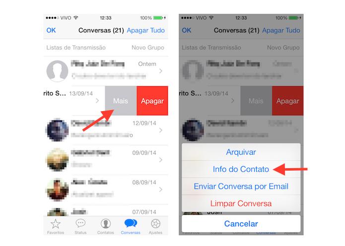 Acessando as informações de um contato no WhatsApp para iOS (Foto: Reprodução/Marvin Costa)