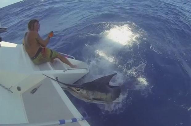 Marlim se debateu e quase acertou pescador com sua mandíbula em formato de agulha (Foto: Reprodução/YouTube/Skabenga Lures)