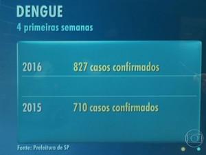 Casos de dengue confirmados em São Paulo (Foto: TV Globo/Reprodução)