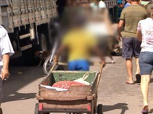 Trabalho infantil aumentou em 2014, o que não acontecia desde 2005, diz o IBGE (Gnews) (Foto: Reprodução GloboNews)