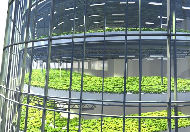 Detalhe do projeto do World Food Building na Suécia (Foto: Divulgação)