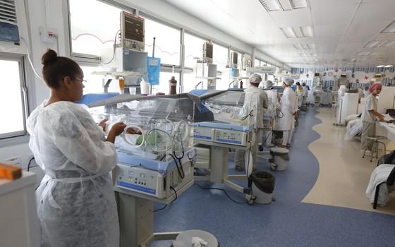 zika virus (Foto: DIEGO NIGRO/JC IMAGEM/ESTADÃO CONTEÚDO)