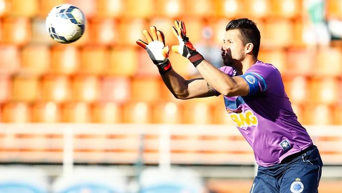 fabio cruzeiro e Palmeiras Pacaembu (Foto: Mauro Horita / Globoesporte.com)